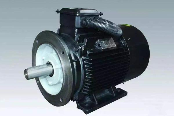 Brushless Permanent magnet motor