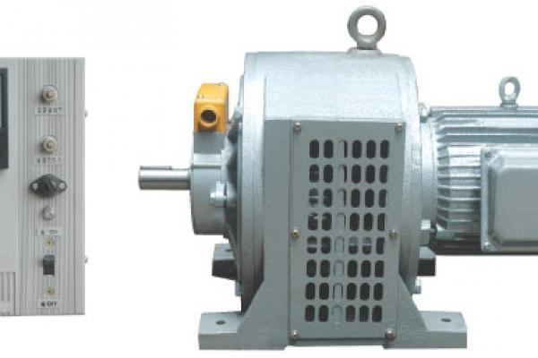 permanent magnet induction motor
