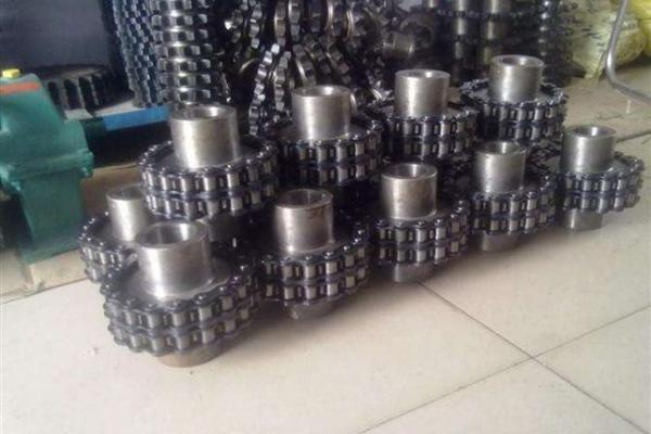 Roller chain shaft coupling