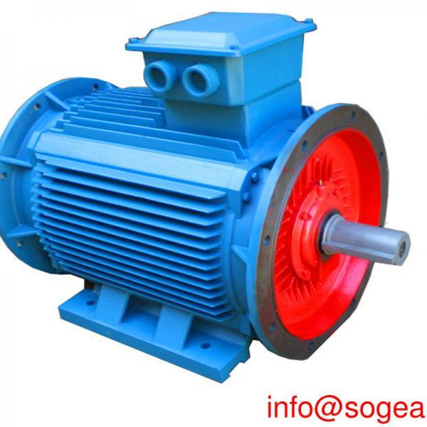 Types of electric motor