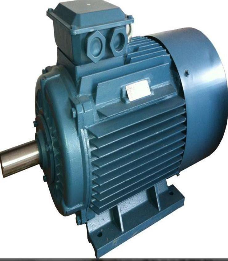 Double shaft motor12